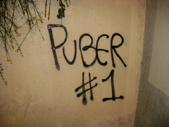 PUBER GRAFFITI SPRAYER IN WIEN VERHAFTET ZÜRCHER SPRAYER  PUBER NUMBER ONE SOLI GRAFFITI TAG FÜR PUBER ZÜRICH MÄRZ 2014
