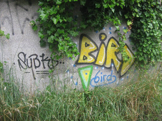 BIRD zurich graffiti rebel art BIRD graffiti  zurich switzerland BIRD graffiti in der schweiz
