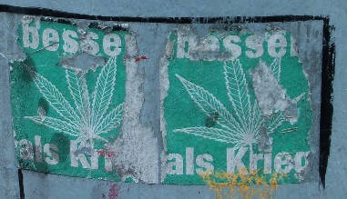 HANF BESSER ALS KRIEG. Aufkleber in Zürich. POT IS BETTER THAN WAR. street art sticker in zurich switzerland. LEGALIZE MARIJUANA LEGALIZE IT NOW